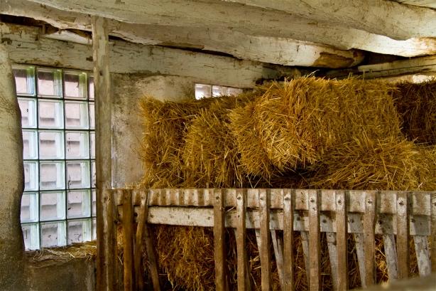 milkhouse2