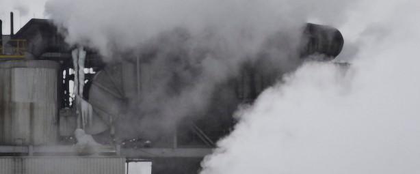 steam art 4