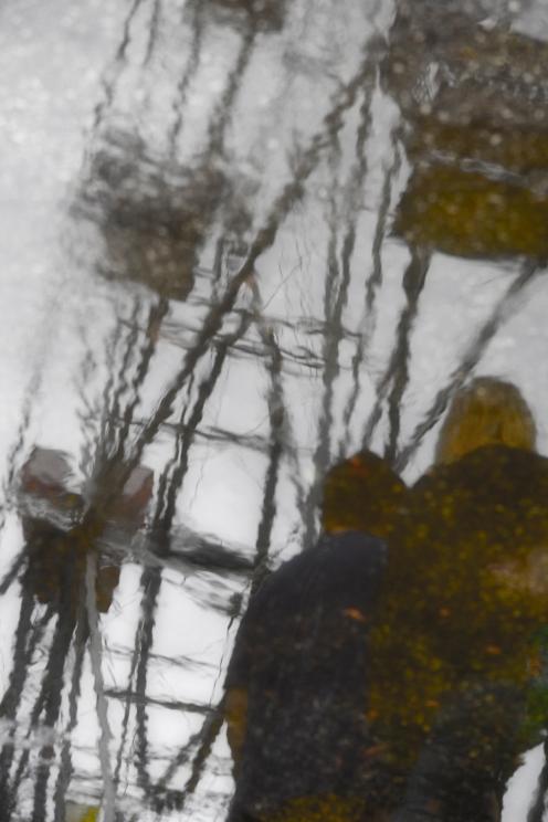 reflection1