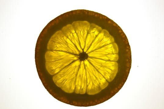 orange slice1