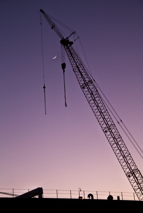 crane and moon